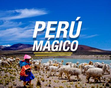 WEB PERU